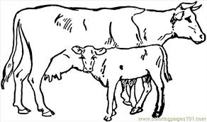 Small Picture Cow 4 printable coloring page for kids and adults