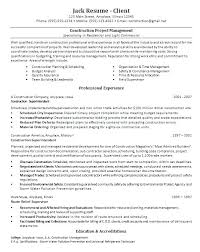 Construction Project Manager Resume Construction Project Manager Custom It Project Manager Resume Doc