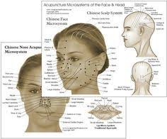 Facial Rejuvenation Acupuncture Points Chart Reflexology Chart Face Skull Look 10 Years Younger In