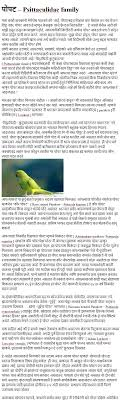 essay on parrot essay on parrot in marathi language hairstyles for essay on parrot in marathi language hairstyles for men essay on parrot in marathi language