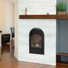 awesome gas ventless fireplace insert natural thedailygraffcom of reviews concept and corner inspiration