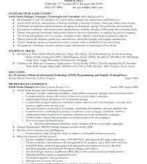 Summary Of Skills Resume Sample Doc Career Summary Resume Examples ...