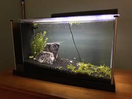 Fluval Spec V Black Slip On Led Light Fluval Spec V Planted Aquarium Enough Lighting For Monte