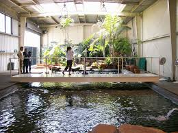 Small Picture Interior Design Indoor Fish Pond Design With Small Garden With
