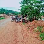 imagem de Jenipapo dos Vieiras Maranhão n-17