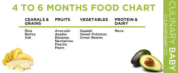 4 To 6 Month Baby Food Chart 4 6 Month Baby Food Chart 6 Month Baby Food Baby Food