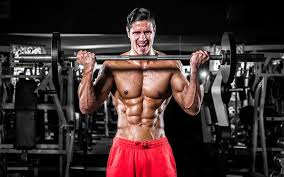 5 effective biceps workout routines