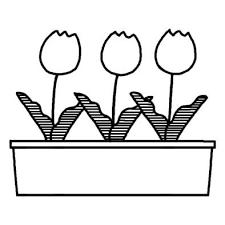 プランターチューリップ春の花無料白黒イラスト素材