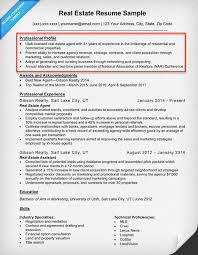 What Is Resume Gorgeous Resume Profile Examples Writing Guide Resume Companion