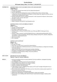 Consultant Sap Resume Samples Velvet Jobs