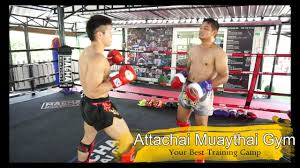 attachai muaythai gym bkk i fighter s choice i an i hiroaki suzuki