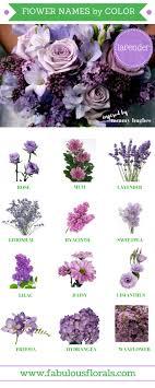 70+ Beautiful Purple Flowers (Care & Growing Tips)