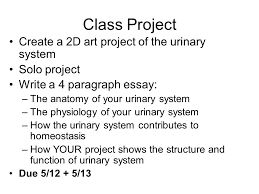 chapter unit the urinary system careers  nephrology  19 class