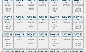Day By Day Exercise Chart 15 Memorable Gym Exercise Chart For Biceps Pdf