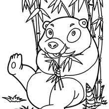 Small Picture WILD ANIMAL coloring pages 129 all the Wild ANIMALS of the world