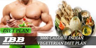 3000 calorie indian vegeterian meal plan for weight gain