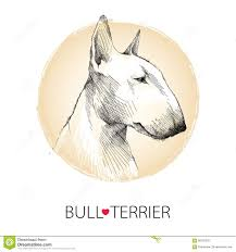 Check spelling or type a new query. Terrier Ilustracoes Vetores E Clipart De Stock 20 794 Stock Illustrations