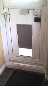 diy automatic dog door