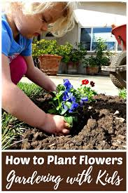 young child planting a flower in an outdoor garden bed