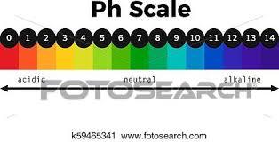 Ph Balance Chart Ph Scale Vector Chart Clipart K59465341 Fotosearch