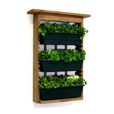 Indoor Kitchen Herb Garden Kit Kitchen Herb Garden Kit The Beautiful Of Indoor Herb Garden Home