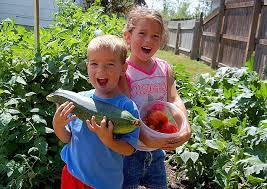 children garden. children garden
