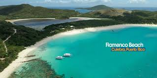 Image result for culebra puerto rico flamenco beach