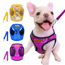 Petlove Dog Harness Size Chart Bling Sequins Harness Leash Set