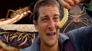 Dünyanın En İğrenç Şeylerini Yiyen Adam - YouTube