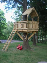 basic tree house pictures. Basic Tree House Pictures C