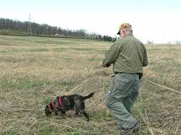 Vermont Leashed Tracking Dogs For Recovery Of Game Winded Bowhunter