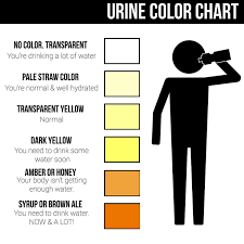 Weather Color Chart Useful Guide For Staying Hydrated In This Hot Weather London