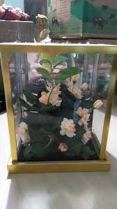 flower box glass spring hill