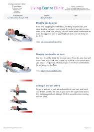 advice sheet back pain sle