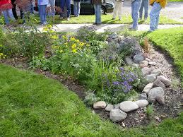 Small Picture Rain Gardens Friends of Bolin Creek