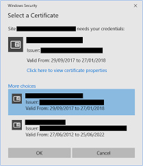 Certificates To Make How To Make Selenium Webdriver Select Client Certificates