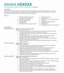 40 Small Business And Entrepreneurship Resume Examples Business Inspiration Entrepreneur Resume