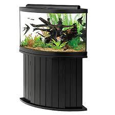 petsmart fish tanks. Fine Petsmart Aqueon 54 Gallon Aquarium Ensemble Throughout Petsmart Fish Tanks S