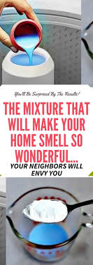 THE MIXTURE THAT WILL MAKE YOUR HOME SMELL SO WONDERFUL YOUR NEIGHBORS  WILL ENVY YOU