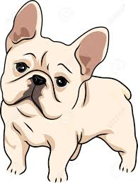 cute bulldog clipart.  Bulldog Bulldog Clipart Cool Impressive French Clip Art With Cute Clipart D