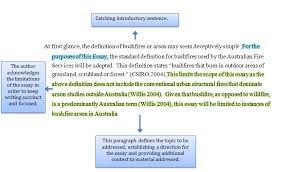 defining a topic introductory essay example