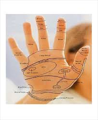 11 Reflexology Chart Templates Free Sample Example