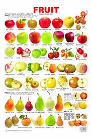 Pre School Fruit Charts 1 Poster Feb 01 2011 Na Na