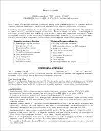 Award Winning Sample Resume Writer Executive Ceo Template Yahoo