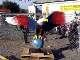 patriotic eagle majestic large bald