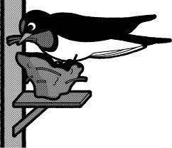 巣作り中の燕のイラストツバメ鳥素材のプチッチ
