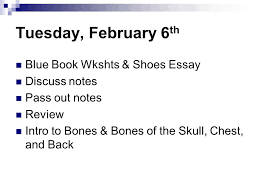 tuesday th blue book wkshts shoes essay discuss  1 tuesday 6 th blue book wkshts shoes essay discuss notes pass out notes review intro to bones bones of the skull chest and back