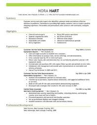 Summary For Resume Fascinating Best Customer Service Representatives Resume Example LiveCareer