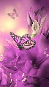 Pink Butterfly iPhone Wallpapers ...