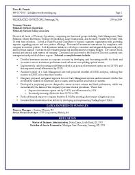 Vp Finance Resume Examples Examples Of Resumes
